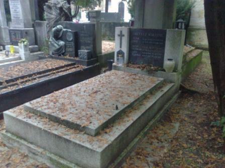 prije-uredjenja-grobnog-mjesta